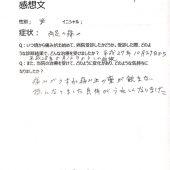 524-ashi